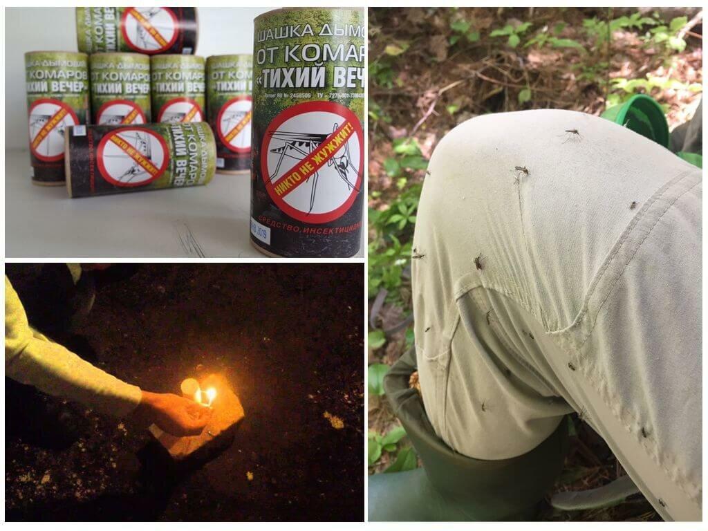 Дымовая шашка от тараканов, помогает ли серная шашка, как делать обработку