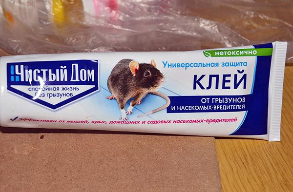 Ультразвук от крыс и мышей: эффективны ли средства на его основе и отзывы об их использовании