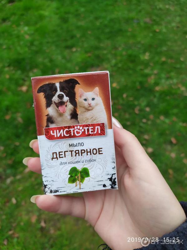 Дегтярное мыло поможет избавиться от блох у собаки