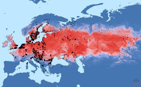 Сюрпризы природы или почему в россии в 2020 году так много комаров