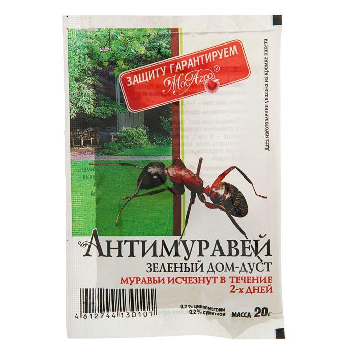 Как избавиться от муравьев на садовом участке: эффективные методы