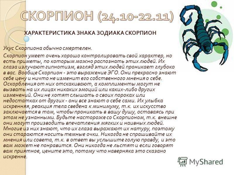 Скорпионница обыкновенная