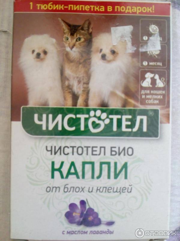 Капли чистотел от блох и клещей для собак
