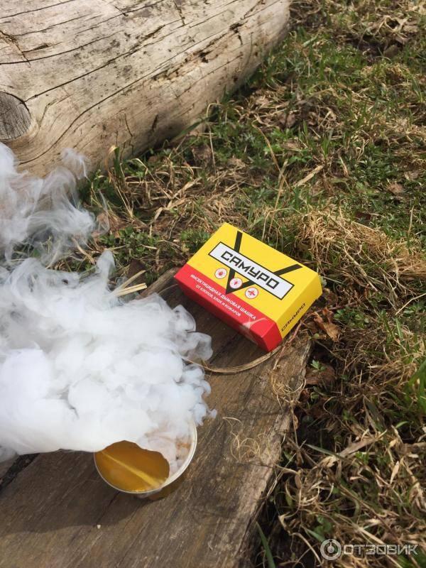 Как правильно использовать дымовую шашку от клопов: эффективна ли она