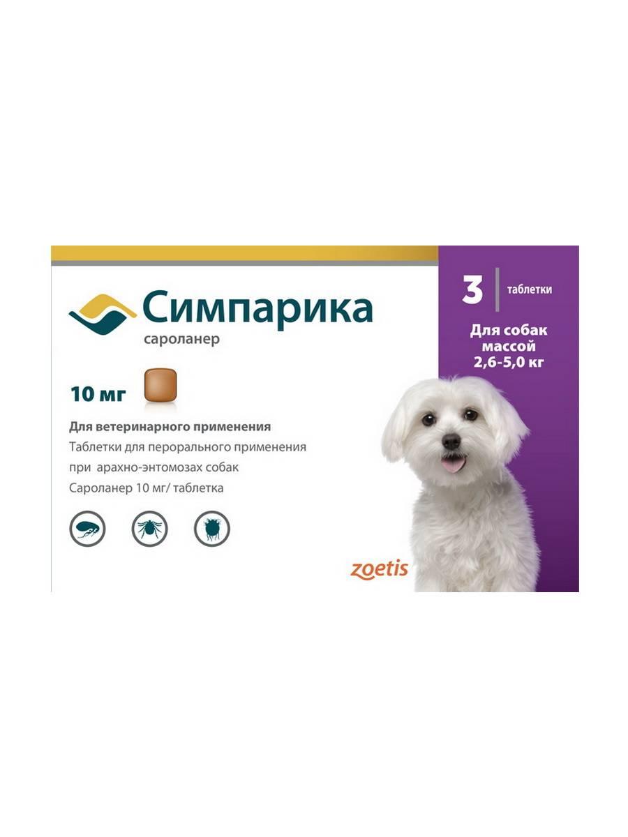 Таблетки от блох для собак и щенков: описание, цена и отзывы ветеринаров. за и против использования жевательных средств бравекто, фронтлайн, симпарика и других