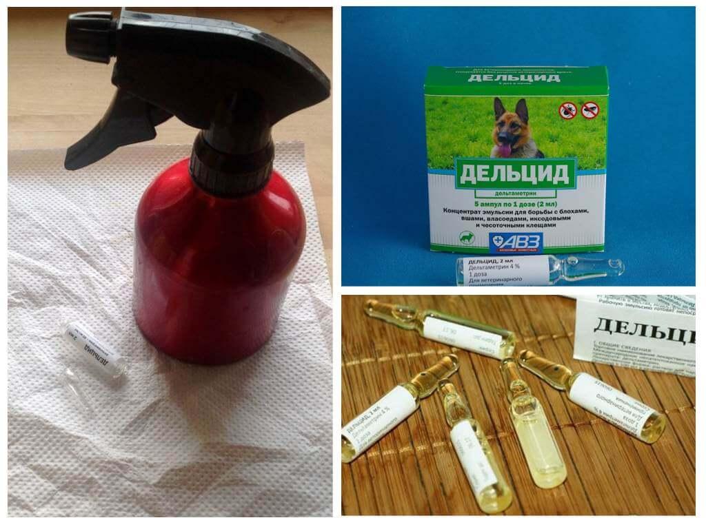 Дельцид 2 мл инструкция по применению для животных от блох. - stopklopam