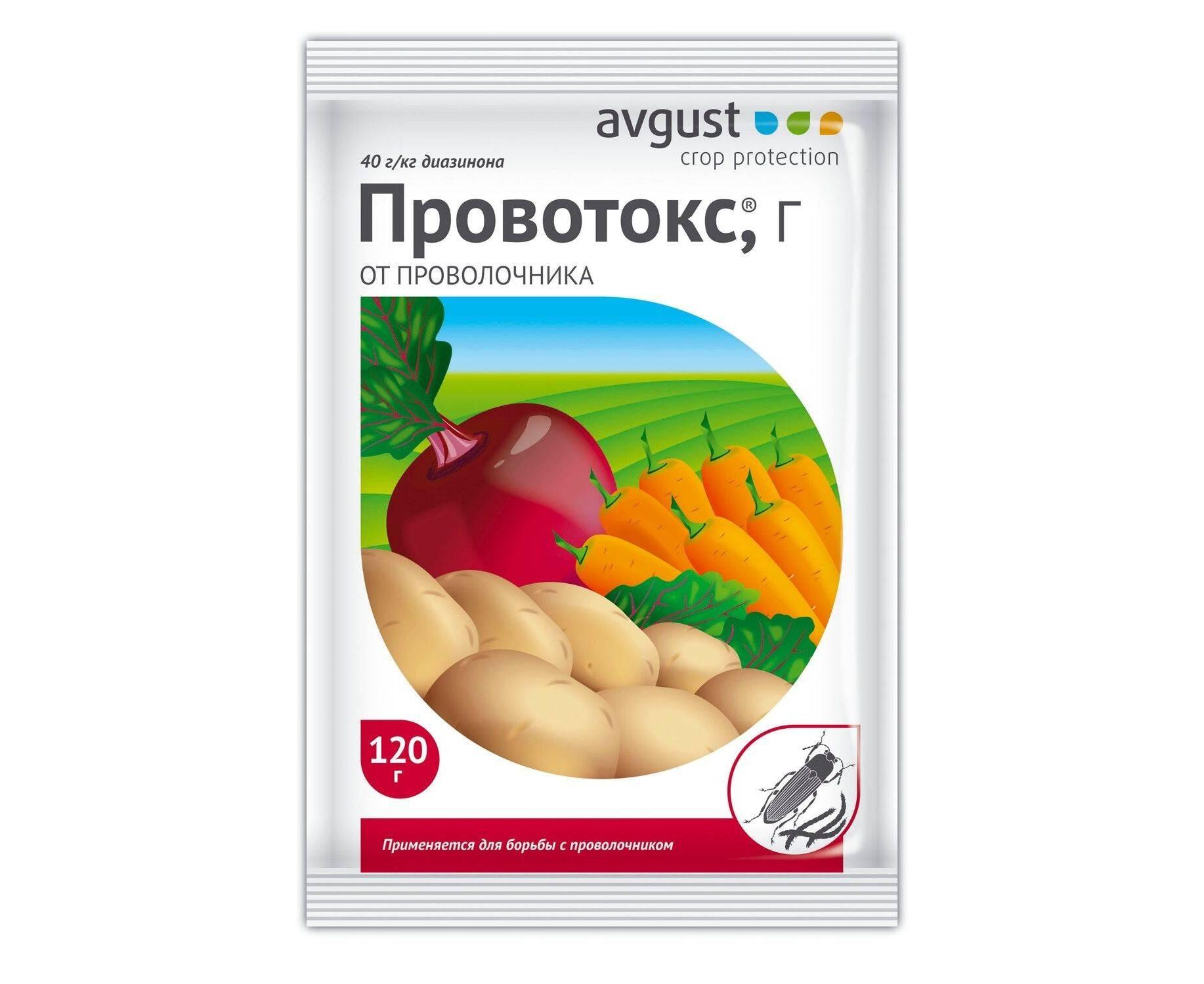 Чем обработать морковь от проволочника - da4nikpro