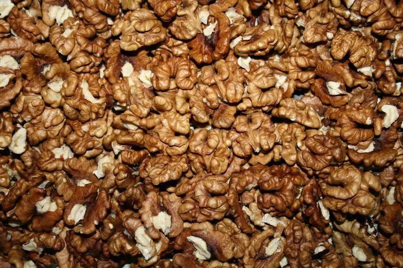 Моль в грецких орехах: что делать и как избавиться от ореховой моли?