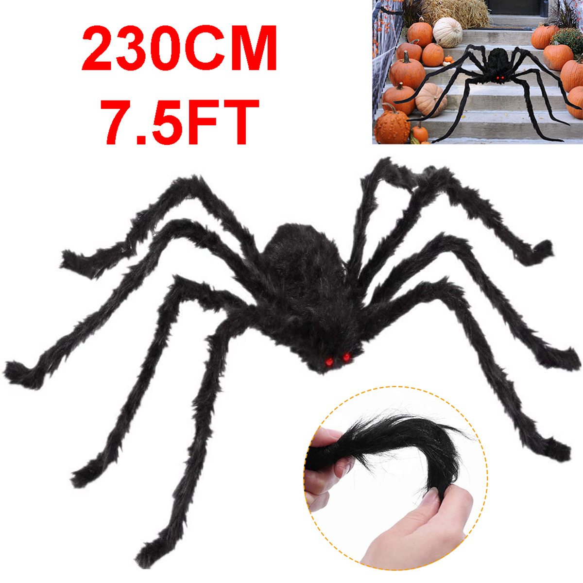 Какой самый большой паук в мире, самый ядовитый, опасный и страшный?