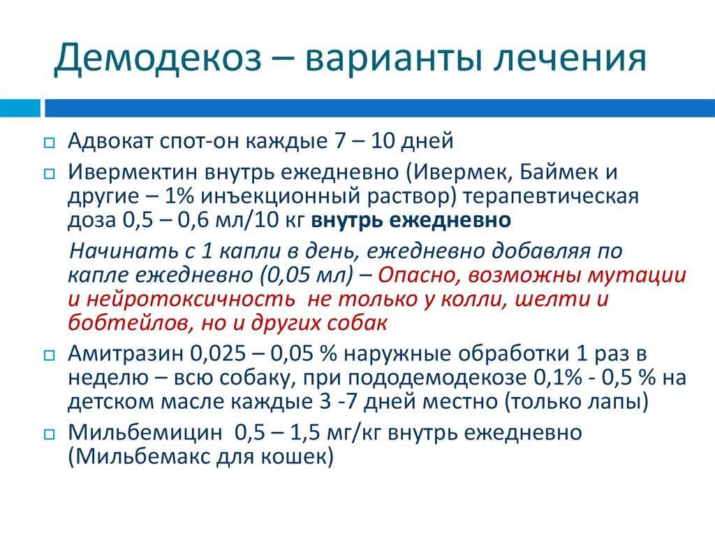 Лечение демодекоза народными средствами: обзор основных методов