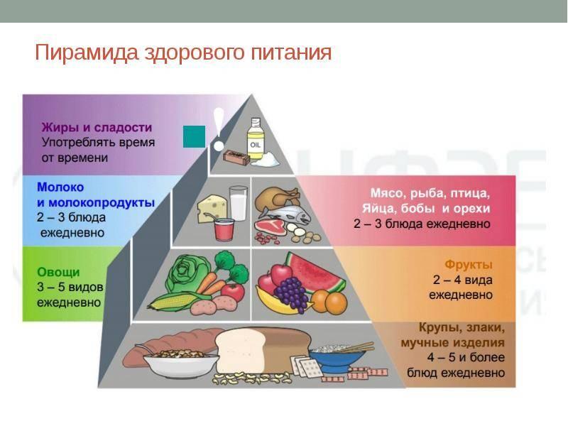 Растительная диета: польза для здоровья, рекомендуемые продукты, меню на неделю