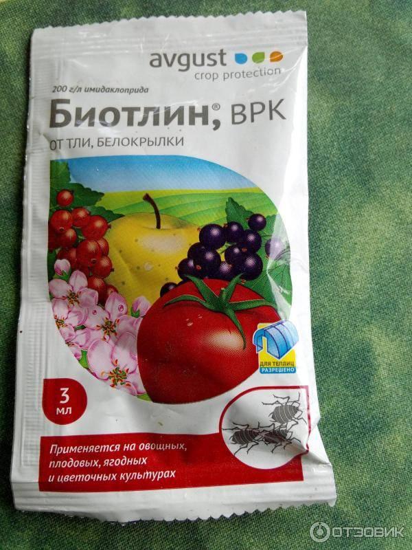 Неубиваемая белокрылка / асиенда.ру