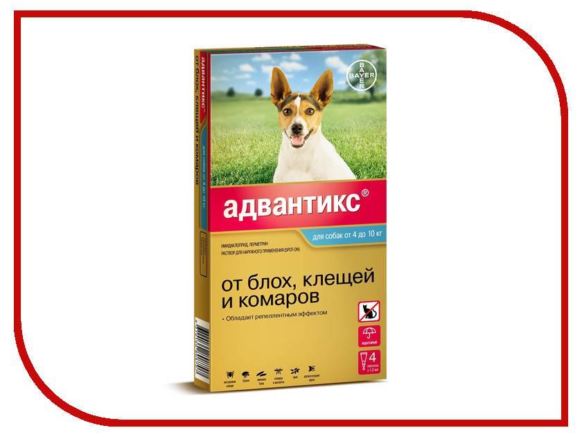 Капли адвантикс для собак — надежная защита питомца от насекомых
