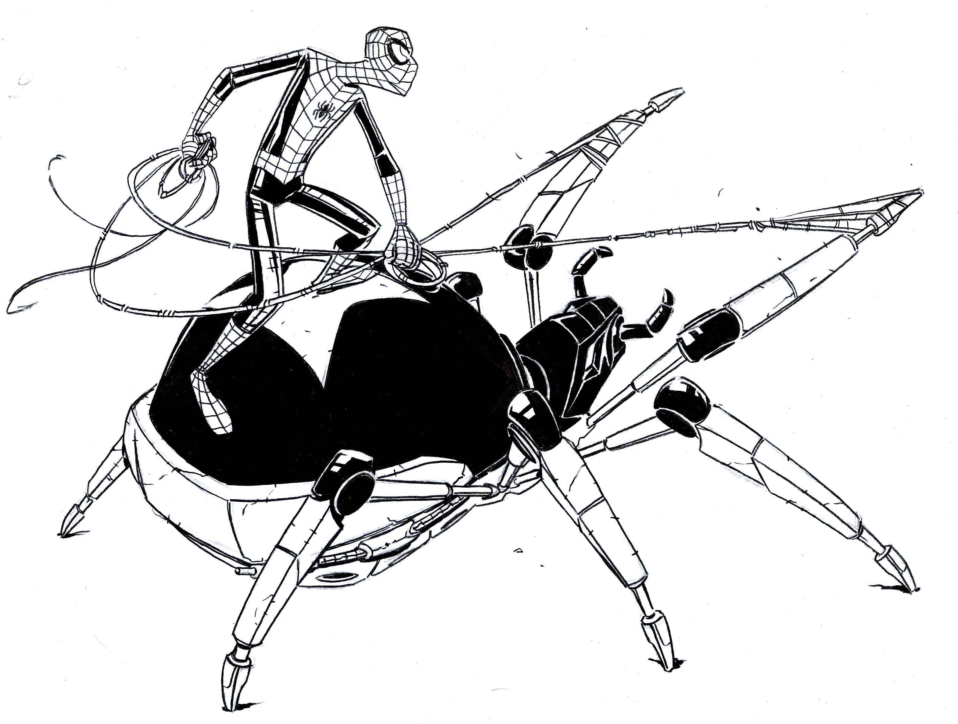 Черная оса – истребительница пауков
