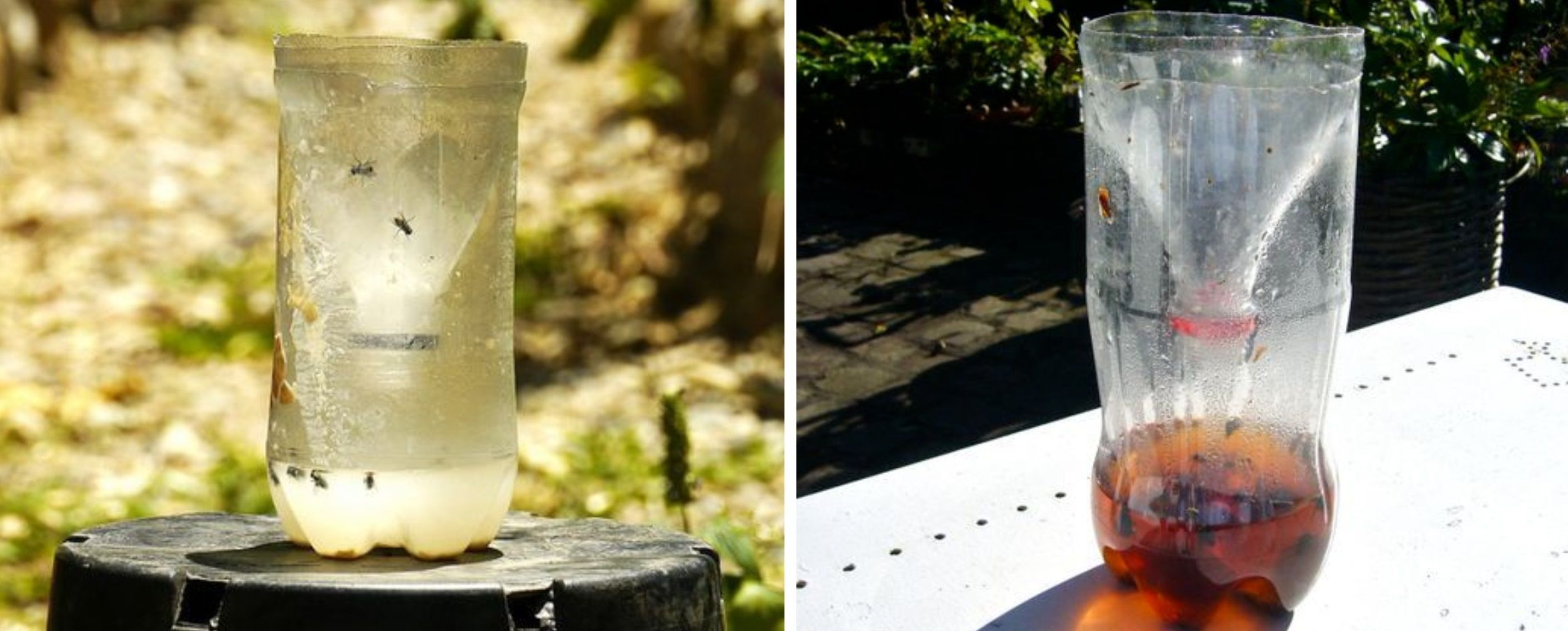 Ловушка для комаров: на улице, своими руками, уничтожитель комаров на даче