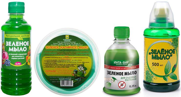Зеленое мыло для защиты растений от тли
