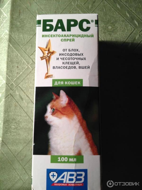 Ушные капли барс для собак и кошек: инструкция по применению, цены и отзывы