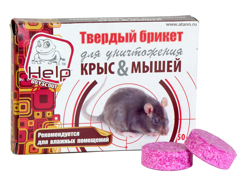 Мумифицирующая отрава для крыс и мышей: как работает это средство и отзывы о его применении