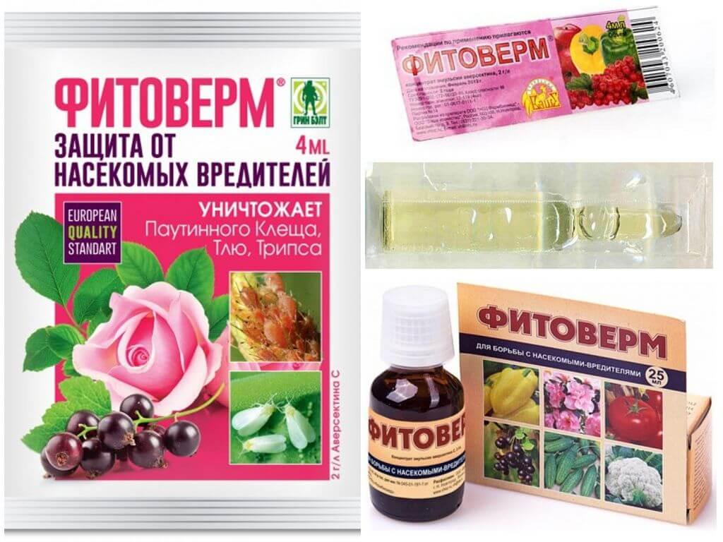 Фитоверм кэ инструкция по применению для комнатных растений. описание препаратафитоверм | дачная жизнь