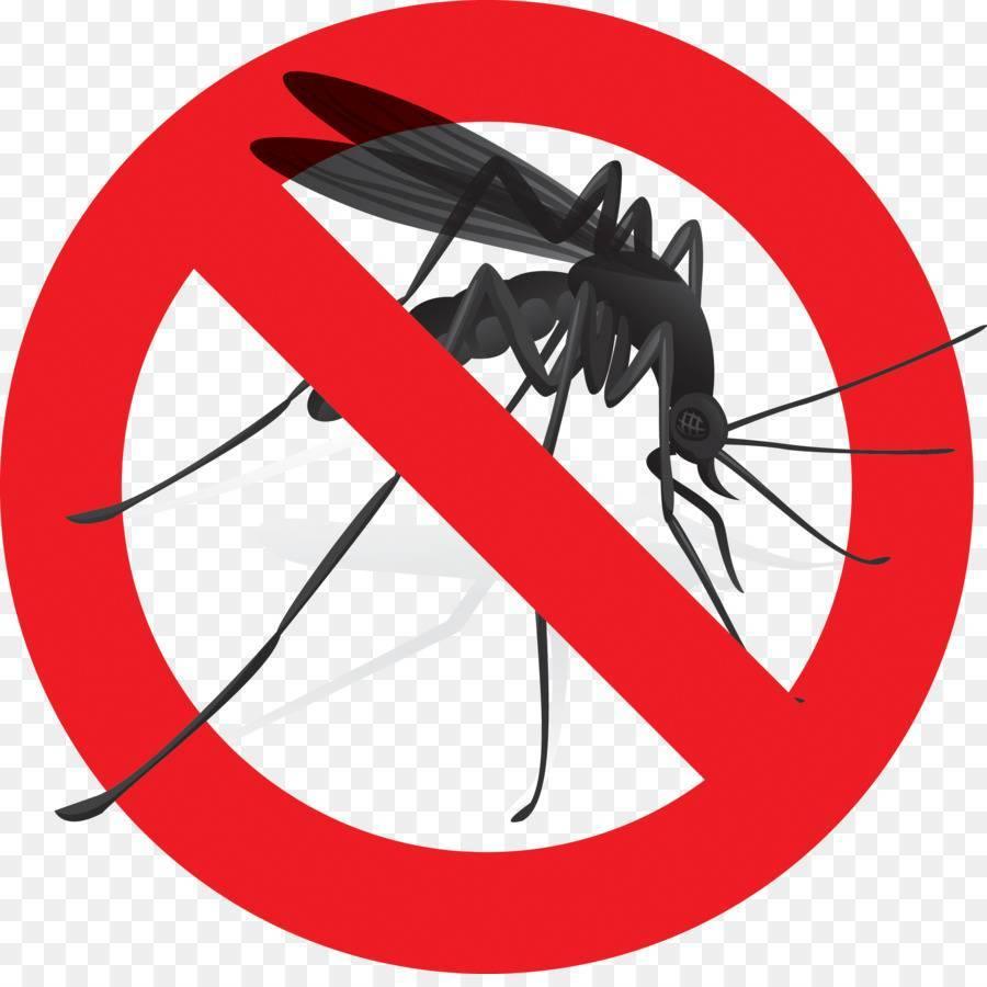 Сонник много комаров в комнате. к чему снится много комаров в комнате видеть во сне - сонник дома солнца