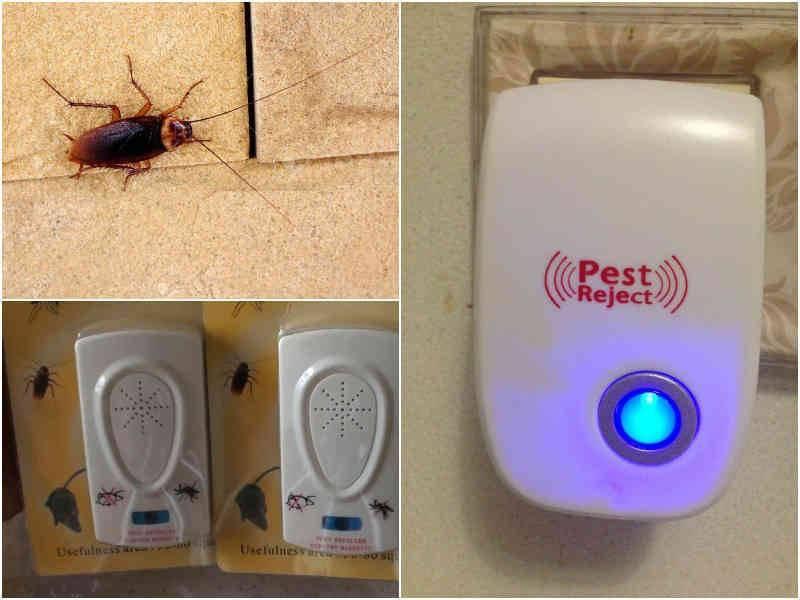 Какой ультразвуковой отпугиватель от тараканов считается лучшим