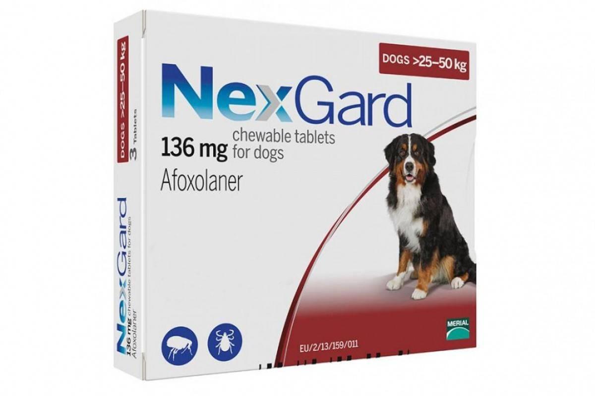 Таблетки от блох и клещей для собак: обзор средств и отзывы