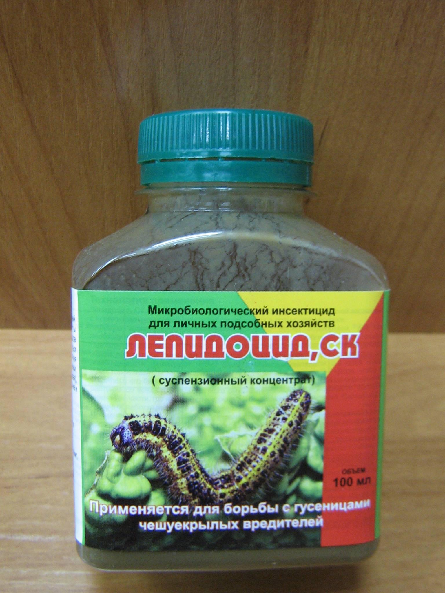 Как избавиться от гусениц? применение народных и химических средств на ydoo.info