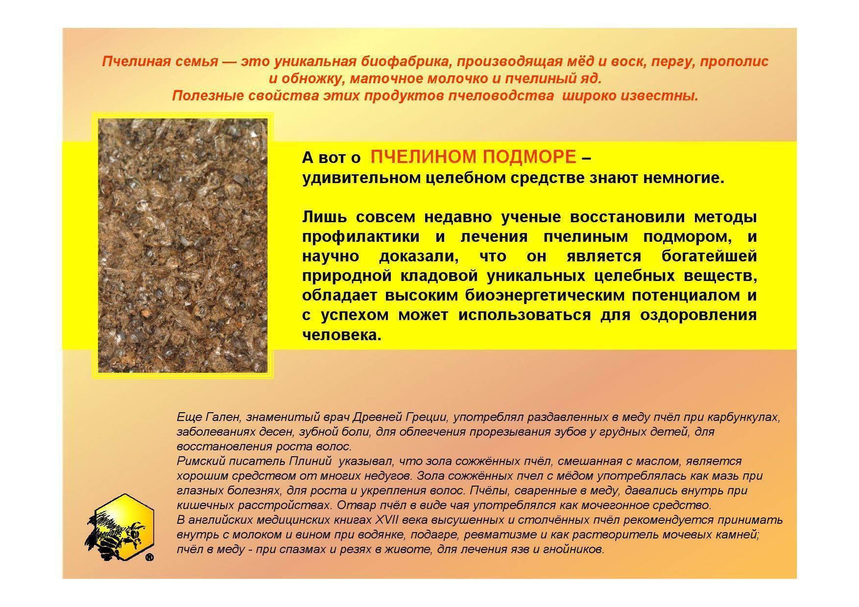 Польза и вред укусов пчел