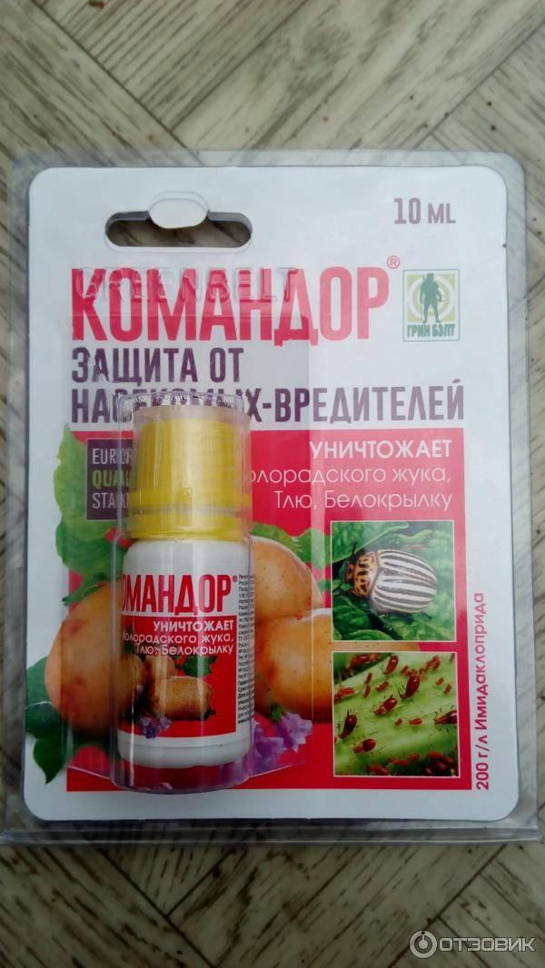 Колорадский жук и борьба с ним с помощью народных средств: вооружаемся знаниями! русский фермер