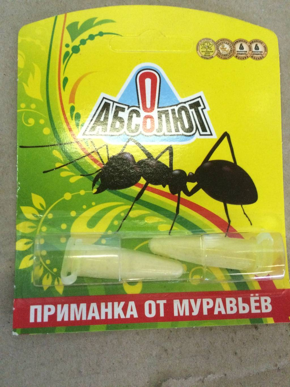 Хитроумная ловушка для муравьев