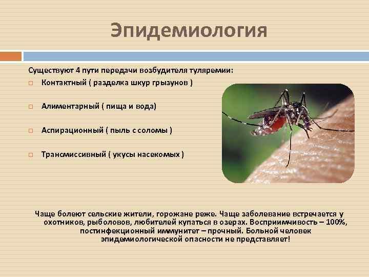Может ли комар заразить гепатитом с и какими болезнями может?
