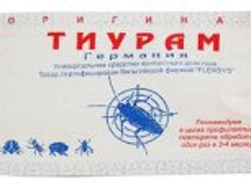 Порошок тиурам от тараканов: инструкция по применению, достоинства и недостаки