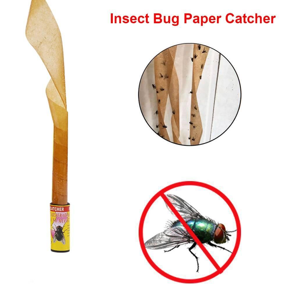 Какие бывают ловушки для мух и как их сделать своими руками