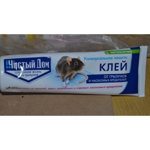 Каким клеем пользоваться против мышей