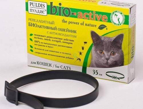 Какой ошейник от блох для кошек лучше выбрать