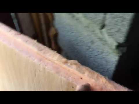 Муравьи, пеноплекс и пенопласт