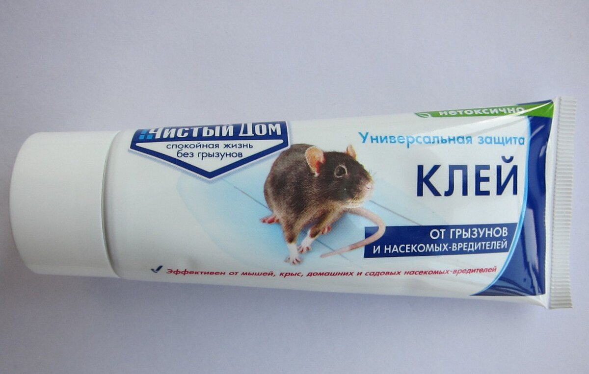 Чем отмыть клей для мышей с пола, кошки, одежды, рук