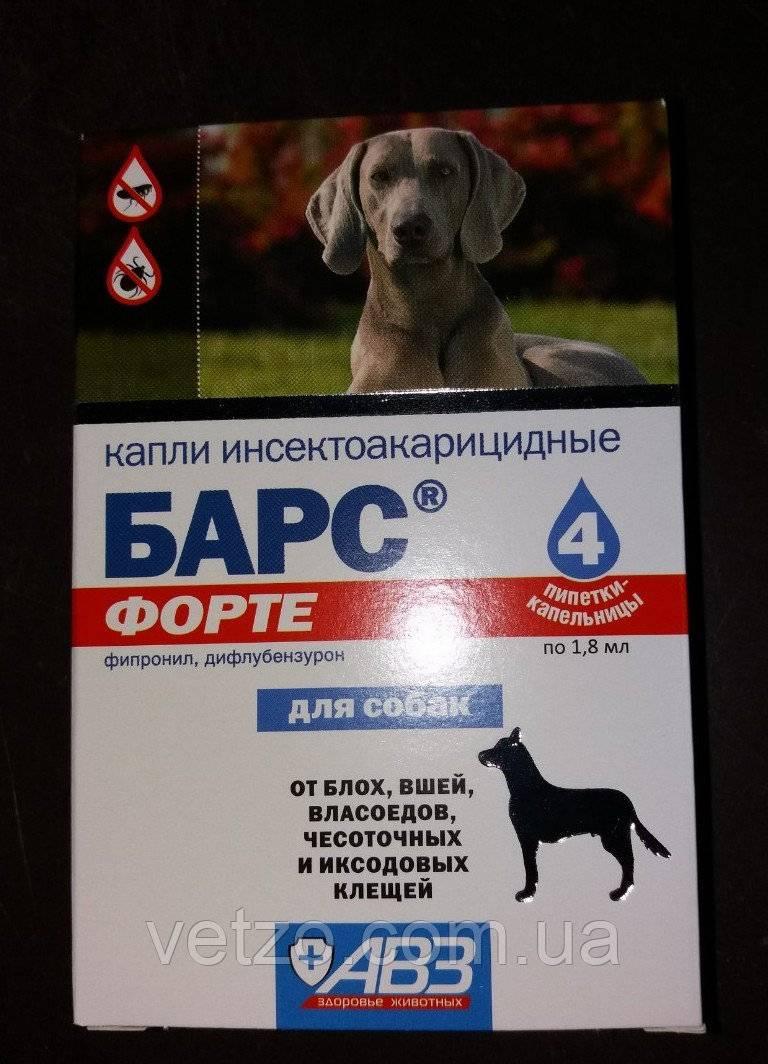 «барс форте» для собак: описание, состав, разновидности + подробная инструкция по применению, дозировка, отзывы