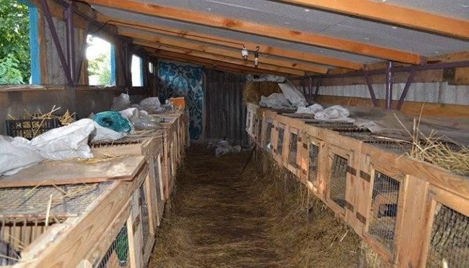 Вентиляция в сарае своими руками: принципы работы, плюсы и минусы, схема, а также как правильно сделать в помещении с животными – курами и свиньями?