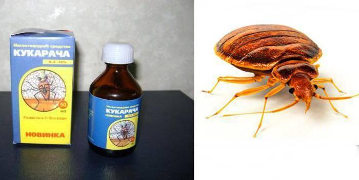 Степень эффективности средства кукарача для борьбы с клопами и тараканами
