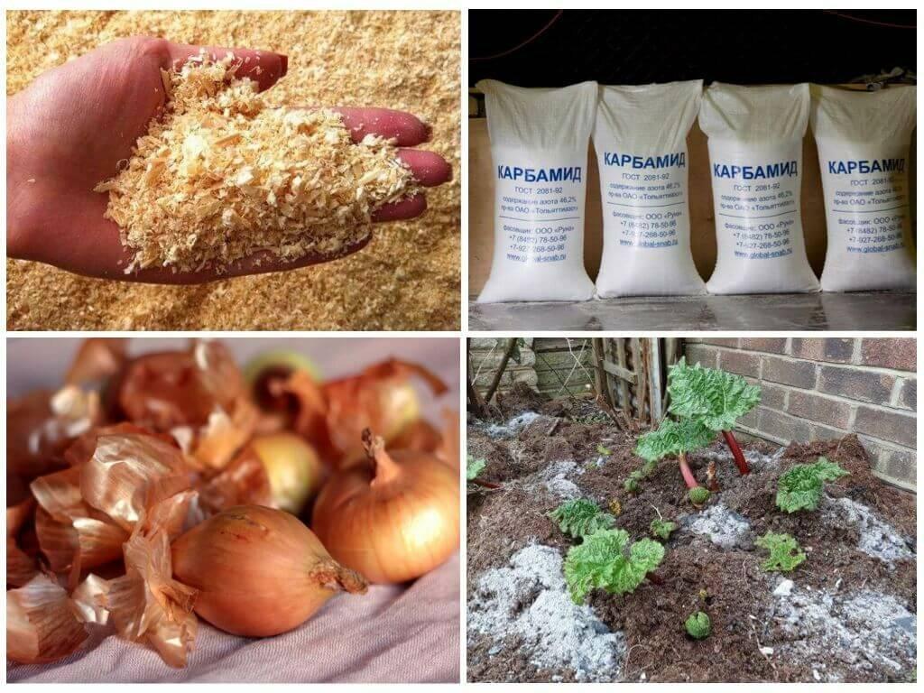 Березовый деготь от колорадского жука: отзывы, применение