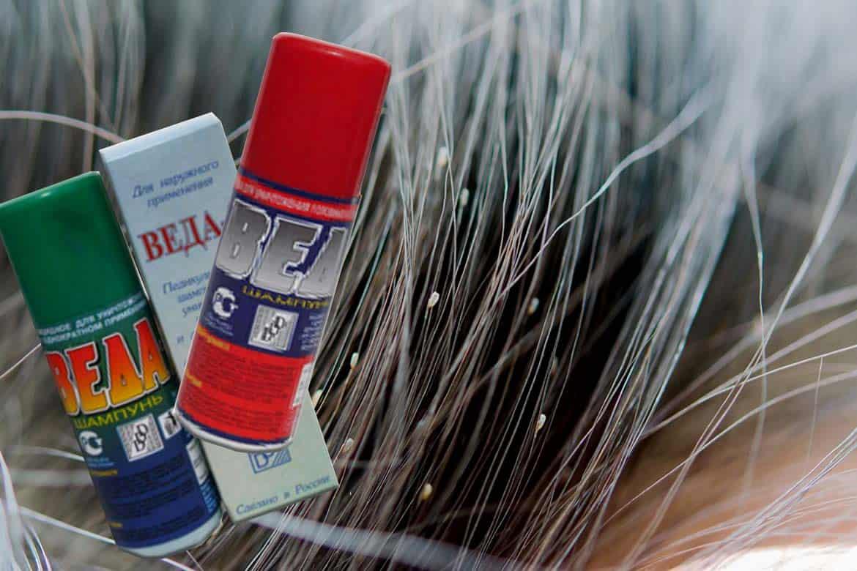 Топ-10 лучших вариантов дегтярного шампуня от вшей и гнид – инструкция по применению, отзывы