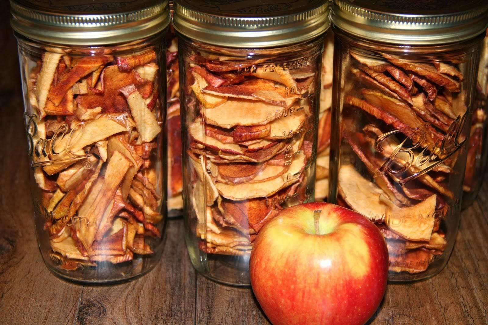 Как сохранить сушеные яблоки от моли в домашних условиях