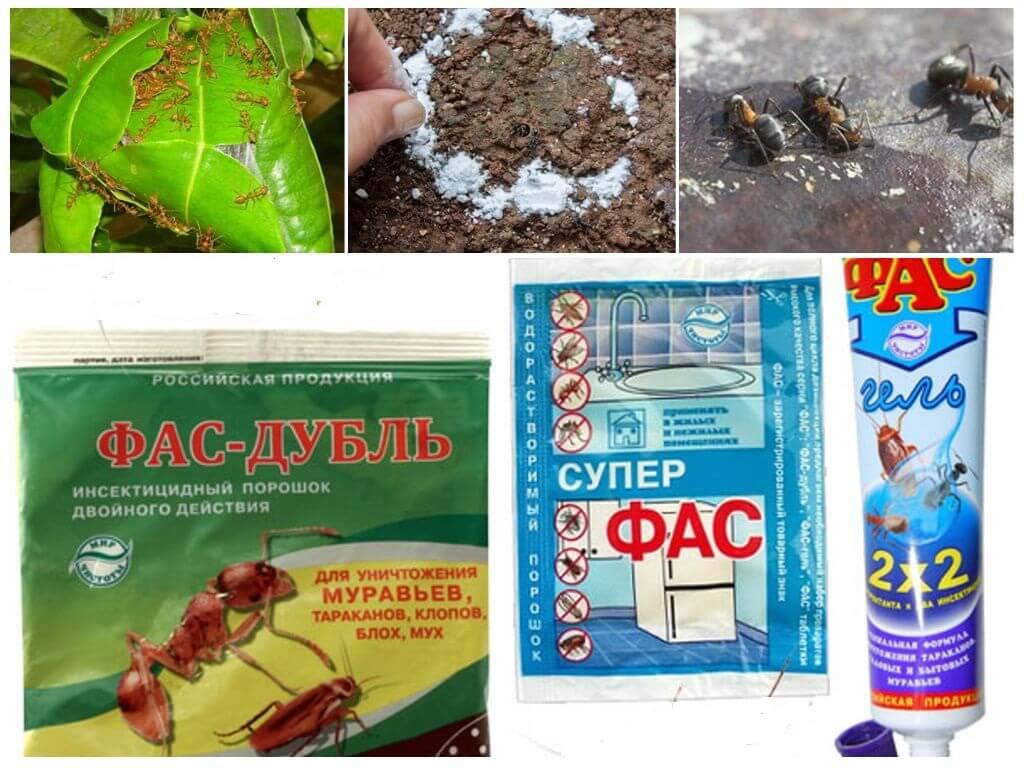 Фас-дубль инсектицидный порошок двойного действия: цена, описание, доставка по россии - 57 руб.