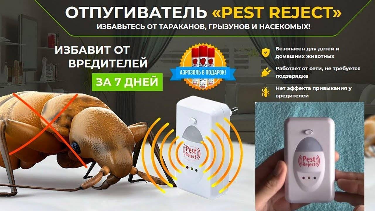 Pest reject инструкция на русском: как правильно использовать, почему пест реджект не работает