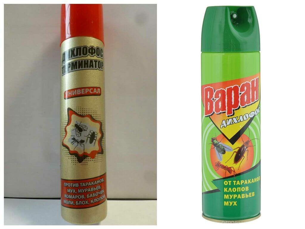 Помогает ли дихлофос от клопов без запах
