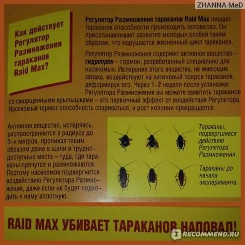 Рейд от тараканов – купить raid, отзывы об аэрозоле рейд