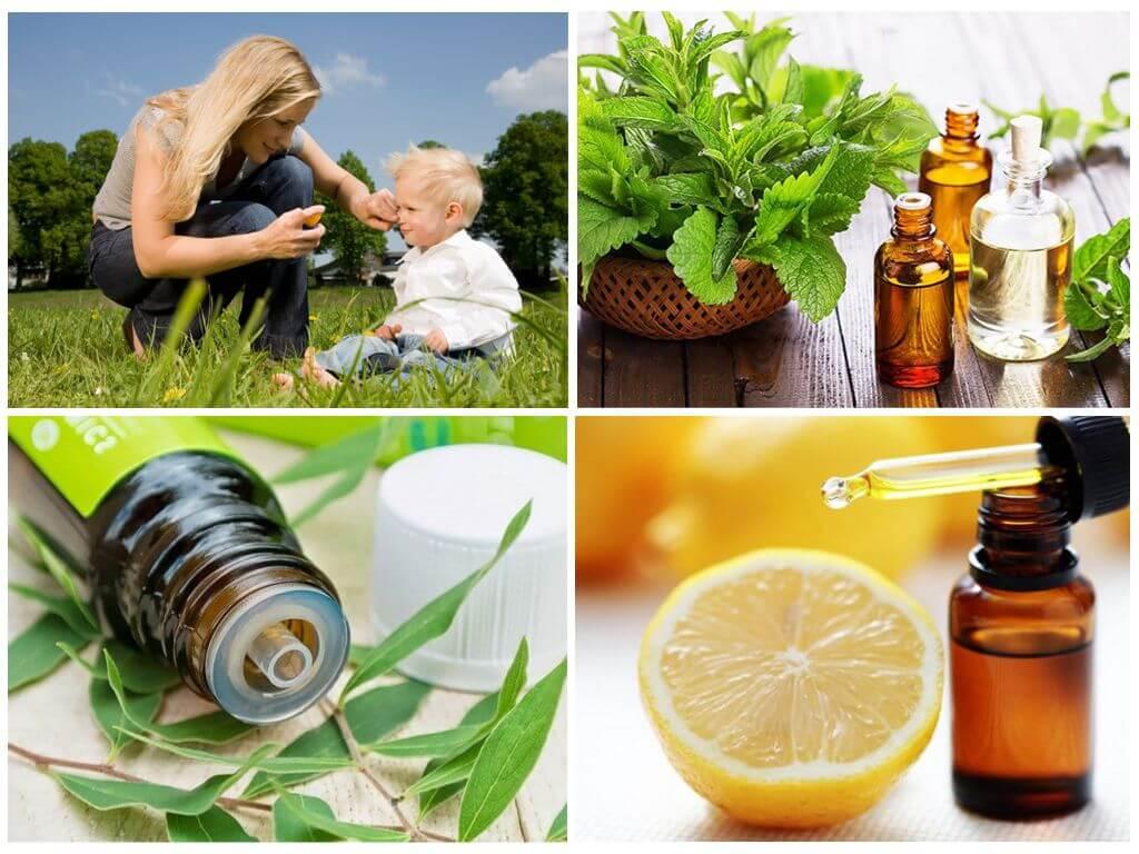 Применяем эфирные масла от клещей и комаров