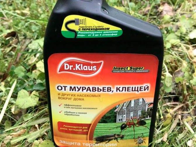 Насколько опасны средства от клещей? - сад, огород - страна мам