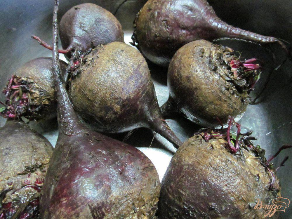Свекловичная нематода - вредители овощных растений - овощеводство - растениеводство - собственник
